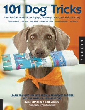 101 Dog Tricks: Step by Step Activities to Engage, Challenge, and Bond with Your Dog *Scratch & Dent*