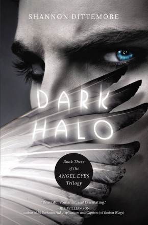 Dark Halo (An Angel Eyes Novel)