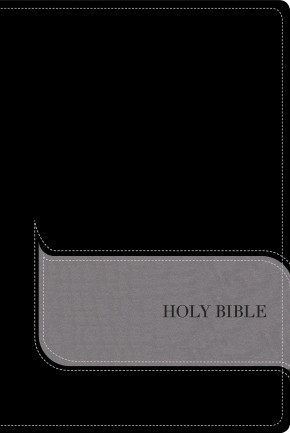 NIV, Understand the Faith Study Bible, Imitation Leather, Black/Gray: Grounding Your Beliefs in the Truth of Scripture